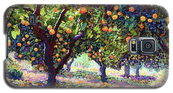 Orange Grove Of Citrus Fruit Trees Galaxy S5 Case