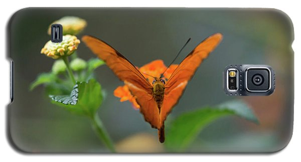 Orange Is The New Butterfly Galaxy S5 Case