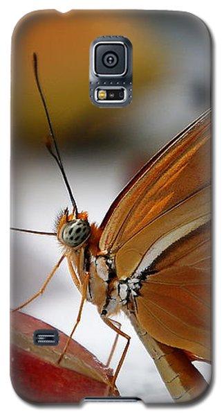 Orange Julia Butterfly Galaxy S5 Case