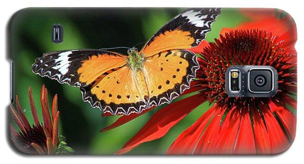 Orange Lacewing Galaxy S5 Case