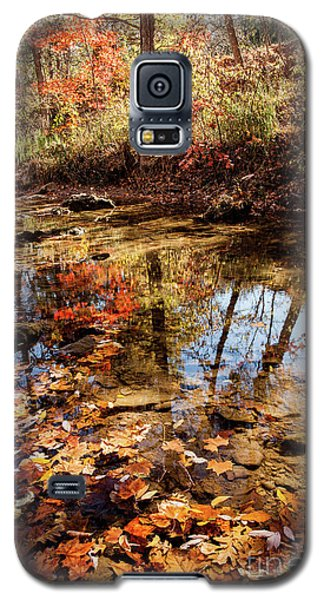 Galaxy S5 Case featuring the photograph Orange Leaves by Iris Greenwell