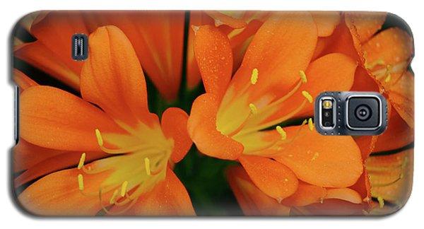 Orange Lilies No. 1-1 Galaxy S5 Case