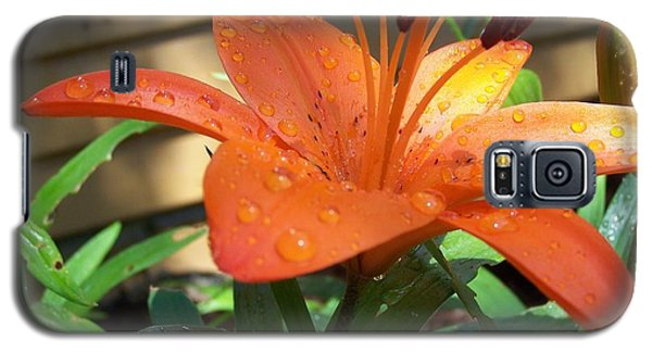 Orange Lilly Galaxy S5 Case