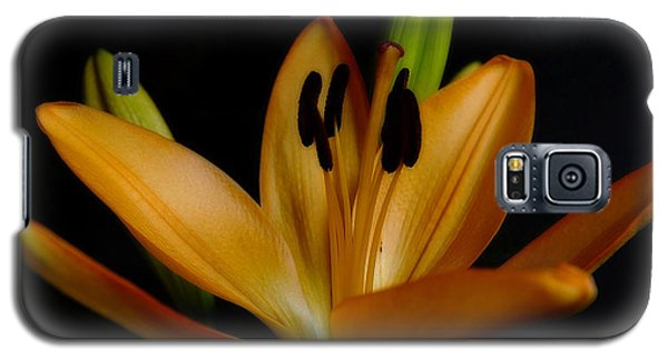 Orange Lily Four Galaxy S5 Case
