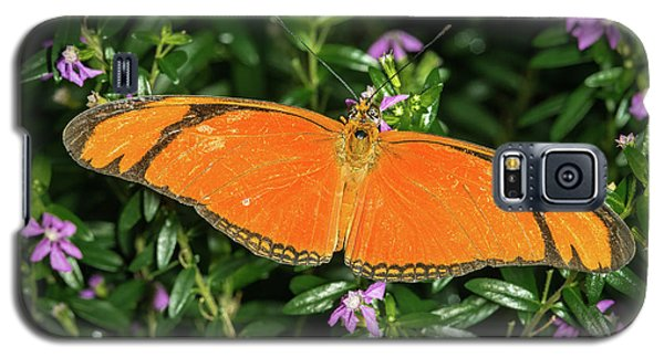 Orange Longwing Galaxy S5 Case