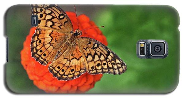 Orange Orange Green Galaxy S5 Case