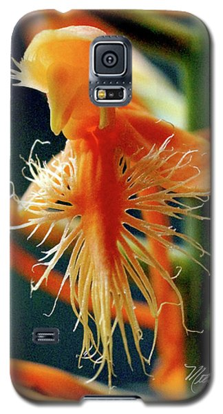 Galaxy S5 Case featuring the photograph Fringed Orange Orchid by Meta Gatschenberger