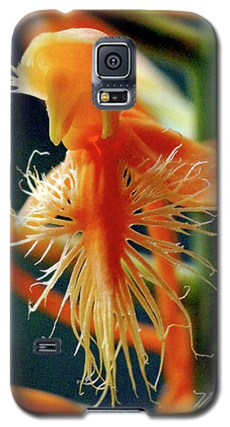 Fringed Orange Orchid Galaxy S5 Case
