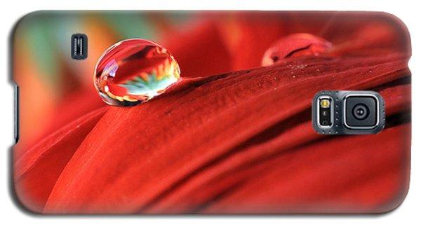 Orange Petals And Water Drops Galaxy S5 Case by Angela Murdock
