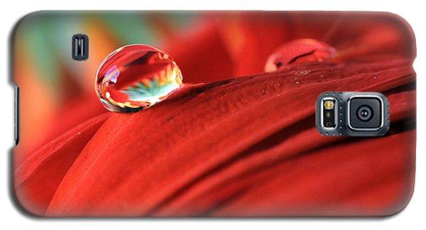 Orange Petals And Water Drops Galaxy S5 Case