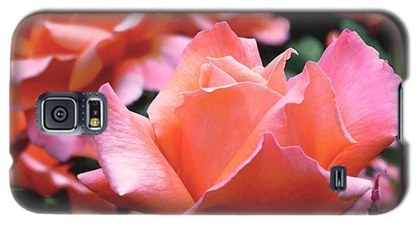 Orange-pink Roses  Galaxy S5 Case by Rona Black