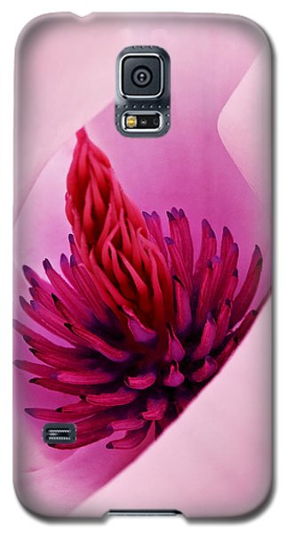 Galaxy S5 Case featuring the photograph Abstract Pink Red White Flowers Macro Photography Art Work by Artecco Fine Art Photography