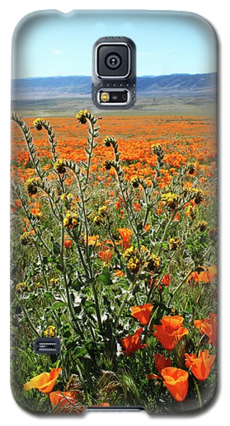 Galaxy S5 Case featuring the mixed media Orange Poppies And Fiddleneck- Art By Linda Woods by Linda Woods