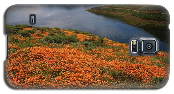 Galaxy S5 Case featuring the photograph Orange Poppy Fields At Diamond Lake In California by Jetson Nguyen