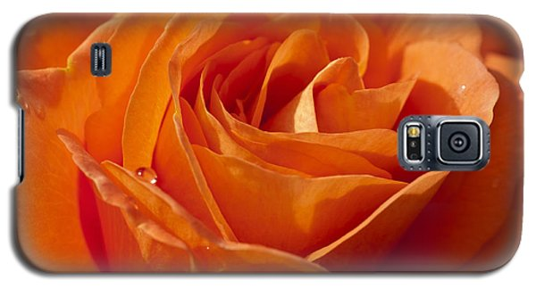 Orange Rose 2 Galaxy S5 Case