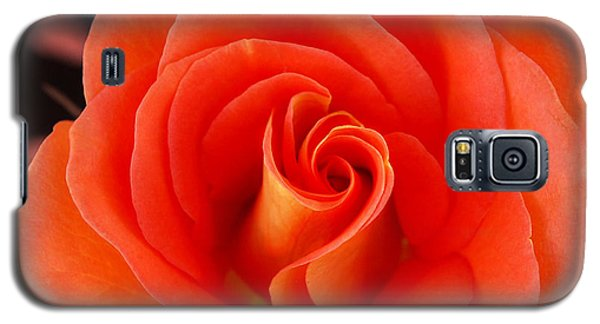 Orange Rose Galaxy S5 Case