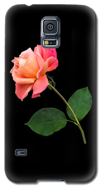 Orange Rose Specimen Galaxy S5 Case