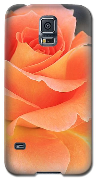 Galaxy S5 Case featuring the photograph Orange Sherbert by Marna Edwards Flavell