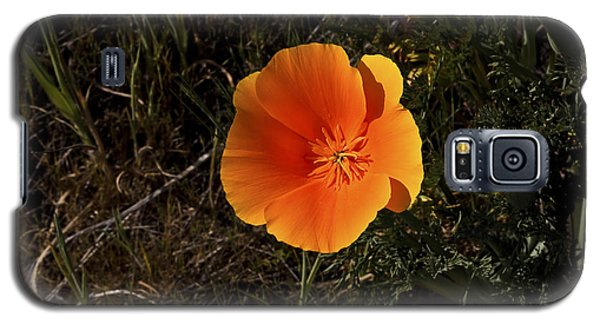 Orange Signed Galaxy S5 Case