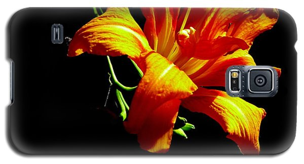 Galaxy S5 Case featuring the photograph Orange Splendor by Fred Wilson
