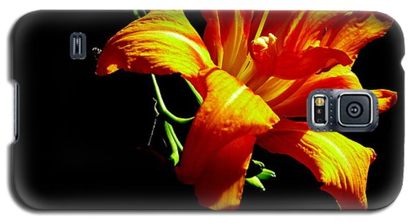 Orange Splendor Galaxy S5 Case