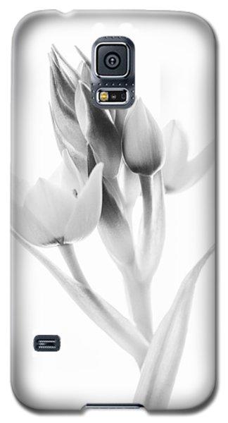 Orange Star - Fine Art Wall Decor Galaxy S5 Case