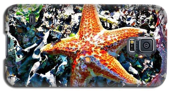 Orange Starfish Galaxy S5 Case
