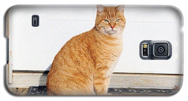 Galaxy S5 Case featuring the digital art Orange Tabby Cat by Jana Russon