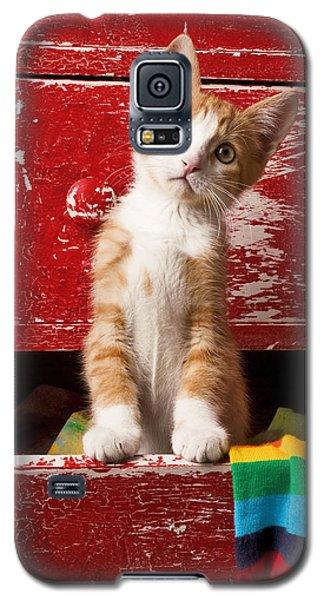 Orange Tabby Kitten In Red Drawer  Galaxy S5 Case