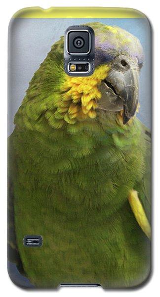 Orange Wing Amazon Parrot Galaxy S5 Case by Victoria Harrington
