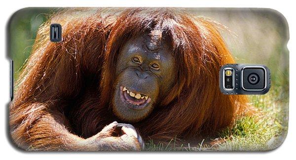 Orangutan In The Grass Galaxy S5 Case by Garry Gay