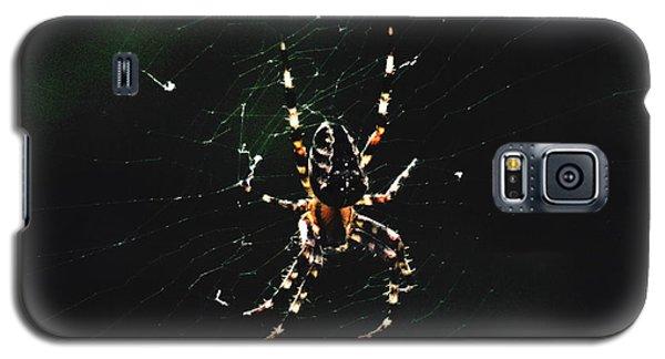 Orb Weaver Galaxy S5 Case