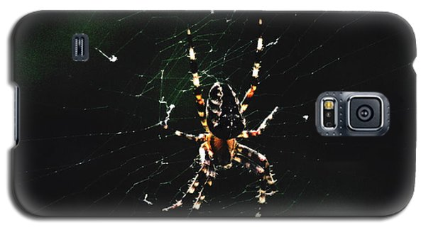 Orb Weaver Galaxy S5 Case