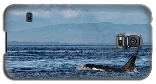 Orca Male With Mt Baker Galaxy S5 Case