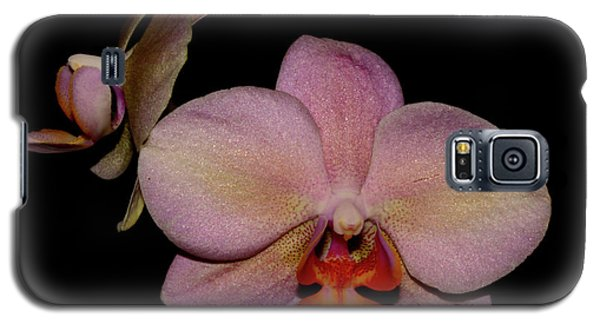 Orchid 2016 3 Galaxy S5 Case