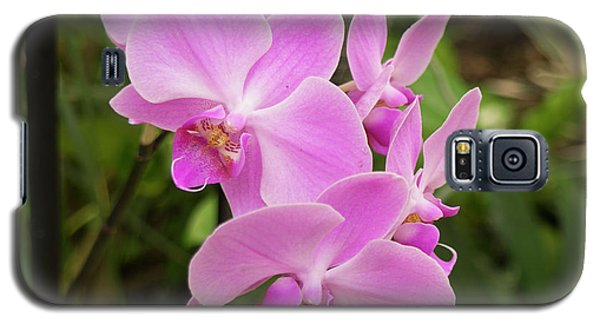 Orchid #6 Galaxy S5 Case