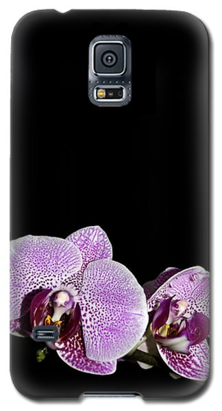 Orchid Blooms Galaxy S5 Case