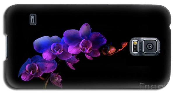 Galaxy S5 Case featuring the photograph Orchid by Brian Jones