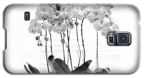 Orchid Butterfly Flowers Galaxy S5 Case by Charline Xia