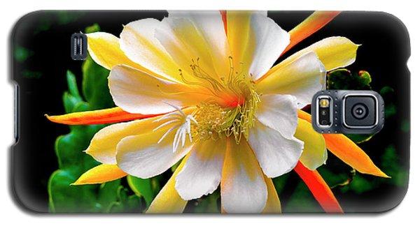 Orchid Cactus Epiphyllum Galaxy S5 Case