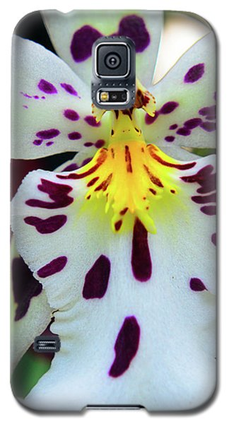 Orchid Cross Galaxy S5 Case