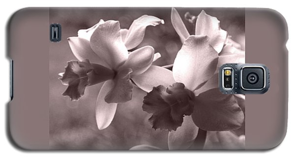 Galaxy S5 Case featuring the photograph Orchid Dream - Square by Kerri Ligatich