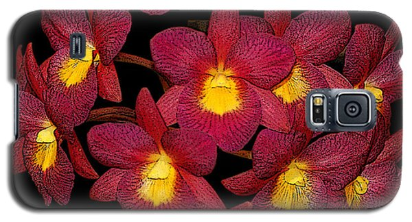 Galaxy S5 Case featuring the photograph Orchid Floral Arrangement by Gary Crockett