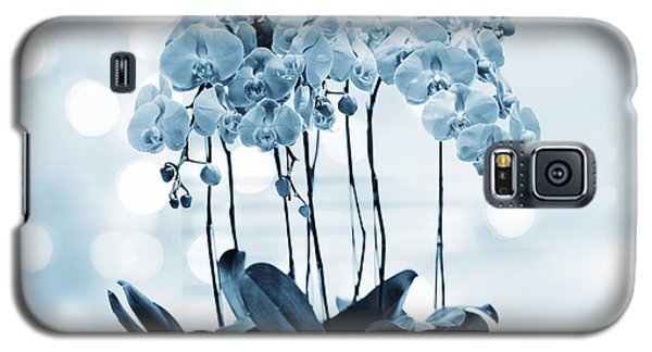 Galaxy S5 Case featuring the photograph Orchid Flowers Blue Tone by Charline Xia
