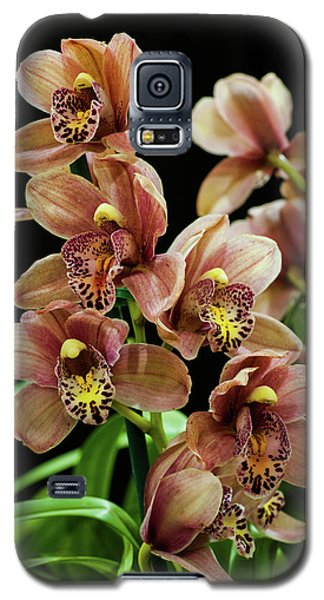 Galaxy S5 Case featuring the photograph Orchid Flowers  by Catherine Lau