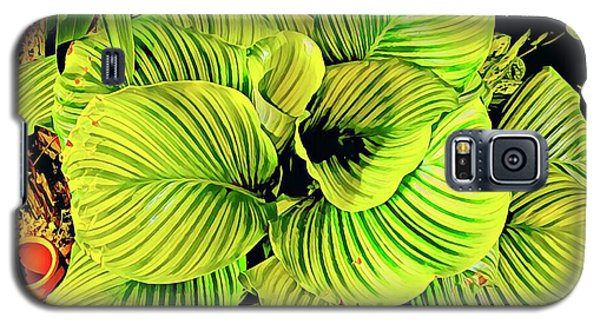 Orchid Green Fade Aloha  Galaxy S5 Case