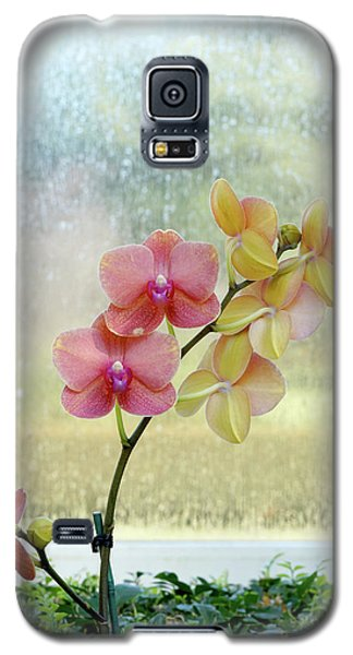 Orchid In Portrait Galaxy S5 Case