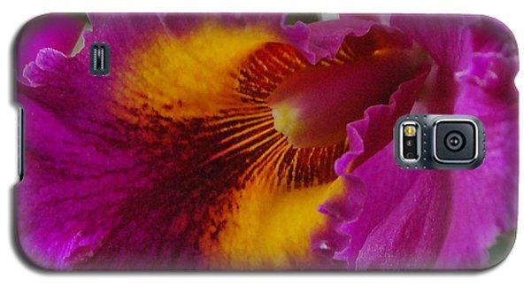Galaxy S5 Case featuring the photograph Orchid In The Wild by Debbie Karnes