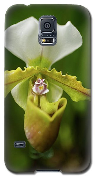 Orchid Galaxy S5 Case by Jocelyn Kahawai