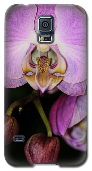 Orchid Life Galaxy S5 Case